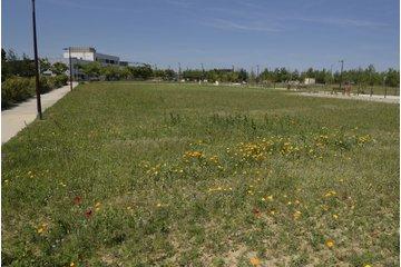 Activités tertiaires - Bâtiment à partir de 800 m² - Lot F4