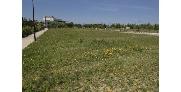 Photo Activités tertiaires - Bâtiment à partir de 800 m² - Lot F4