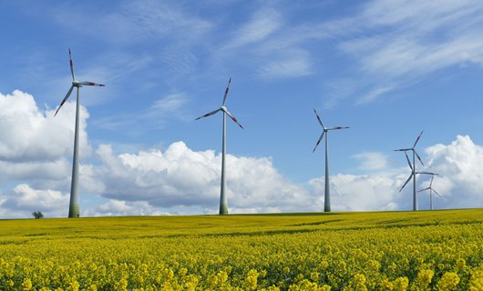 wind-power-1357419_530px.png