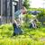ATELIER DU POTAGER : #19 PLANTATIONS