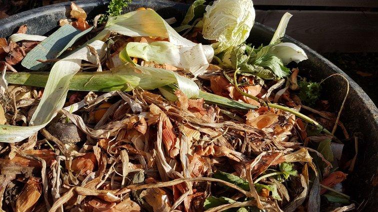 Biodéchets à valoriser dans un compost.