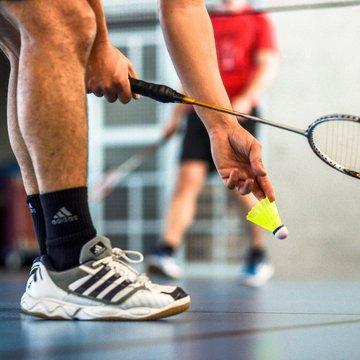 Plusieurs salariés de Rovaltain pratiquent le badminton