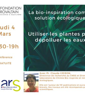 LA BIO-INSPISRATION COMME SOLUTION ECOLOGIQUE : UTILISER LES PLANTES POUR DÉPOLLUER LES EAUX