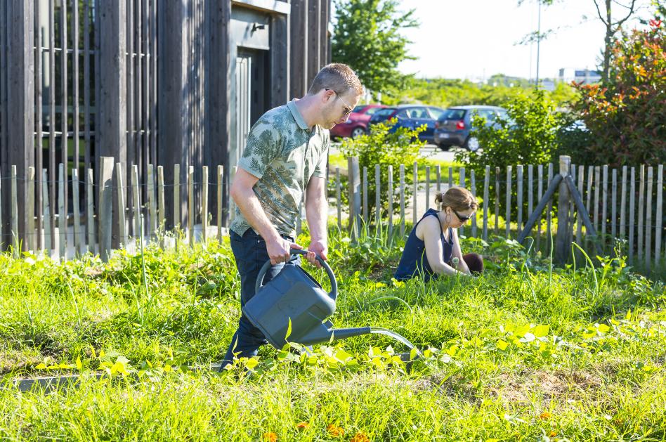 Ateliers de formation à l'agroécologie à Rovaltain.