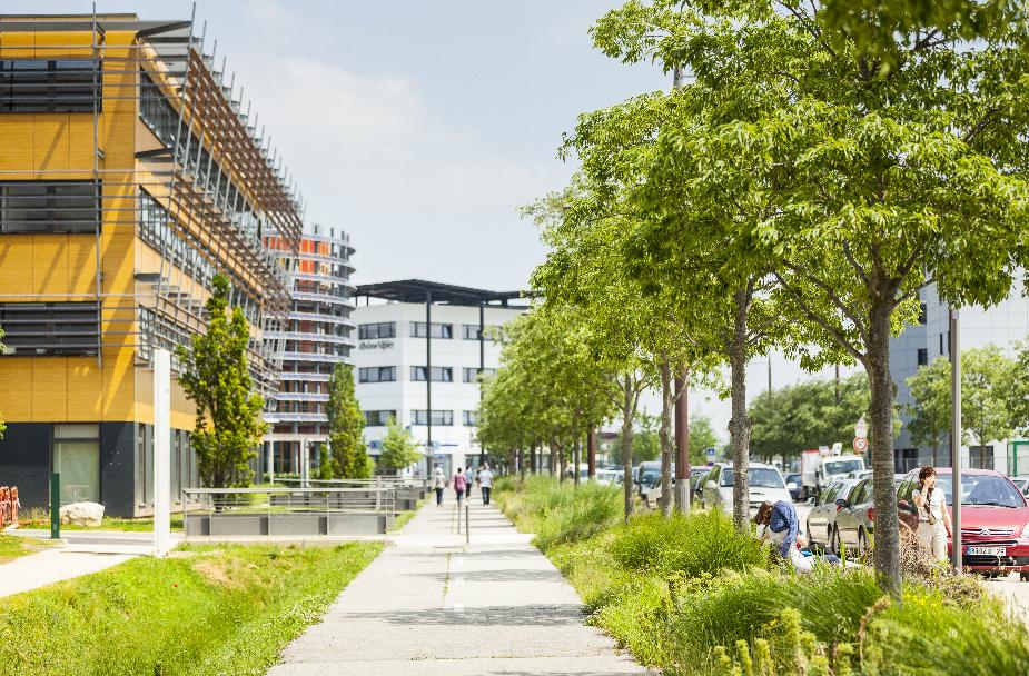 L'offre immobilière proposée à Rovaltain - Valence TGV est diversifiée et adaptée à chaque entreprise