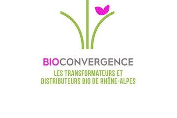 Bioconvergence