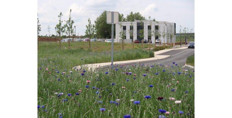 Photo Activités industrielles - Bâtiment à partir de 1300 m² - Lot 22